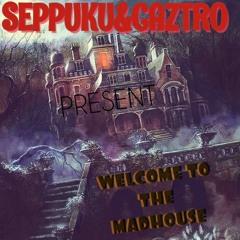 Welcome To The Madhouse ft SEPPUKU SAVIOR