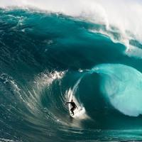 arguments amongst waves