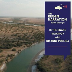 84 Excerpt. Is the Snake Waking? With Dr Anne Poelina
