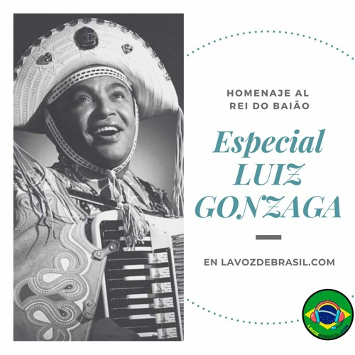 Vidas Brasileiras - LUIZ GONZAGA