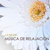 Enerjia Reiki (Musica para Relajarse)