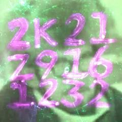2K21 Z916 1232