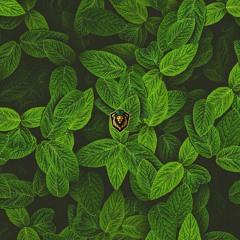Simbamusic - Mint Mix 05/21