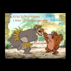 Kriss Rolo Presents - The 1 hour D&B (Jungle) Mix (Free Download)