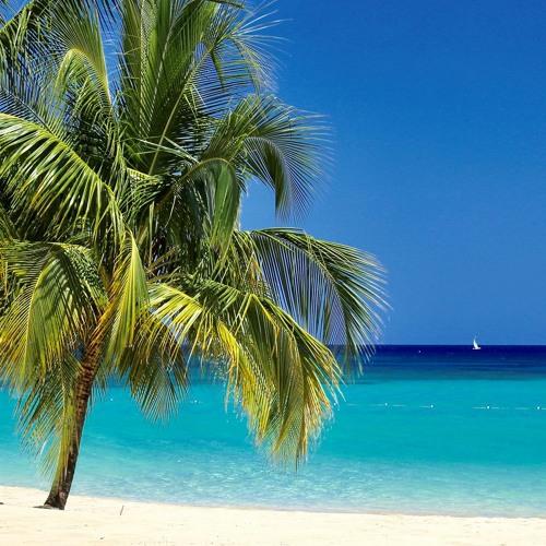 Caribbean Paradise - TripAdvisor Review