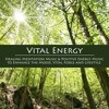 Zen Meditation Song (Waterfall Sounds of Nature)