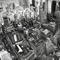 The FOE - City City