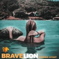 BraveLion - Summer Nyght (Instrumental VLOG Version)(Free Download)