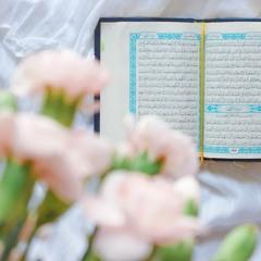 نور تقرأ كتاب الدكتورجاسم سلطان:النسق القرأني و مشروع الإنسان/ الفصل الأول:قصة الخلق