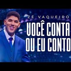 VOCÊ CONTA OU EU CONTO - ZÉ VAQUEIRO / VERSÃO FUNK BEAT VUK ALIEN [DJ PATRICK] 2021
