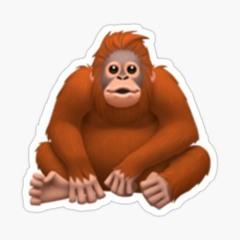 Monkey Big