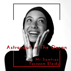 Mr Samtrax - Astronaut In The Ocean Feat Tasneem Elaidy