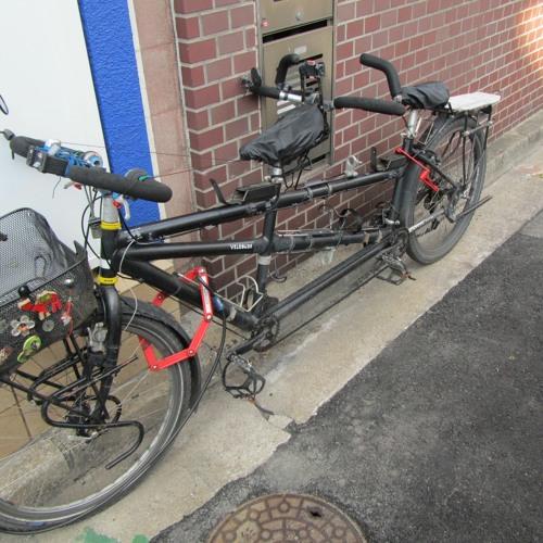 Şen Gençler - İsmail Odabaşıoğlu - Görme engelliler için bisiklet ve kullanımı