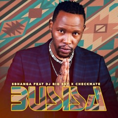 Busisa (feat. Checkmate & DJ Big Sky)