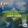 Orjan Nilsen x Dennis Sheperd x Nifra x Estiva - Cabin Fever (Orjan Nilsen Club Mix)