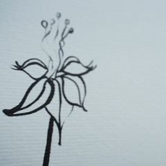 Une Fleur de Bénin