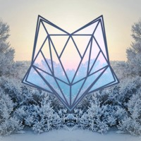 Kaleidofox - Arctic Dawn