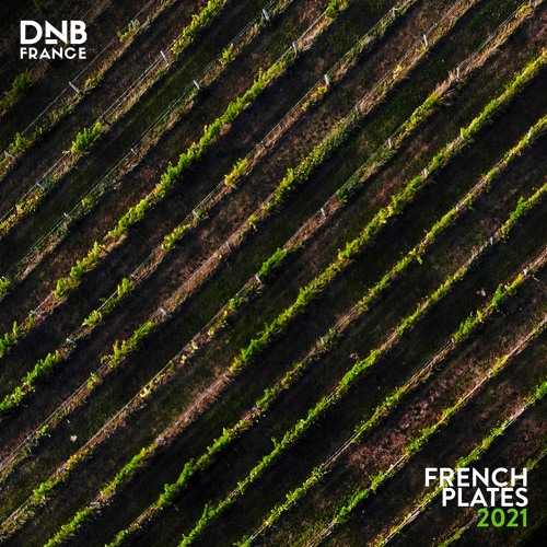 VA - DNB France: French Plates 2021