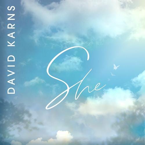 She - David Karns