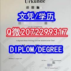 办理UMA高仿毕业证书Q微2072299317办曼海姆大学真实认证学历 UMA文凭证书精仿原版成绩单 雅思/托福成绩单 全套真实可查学历认证 海牙认