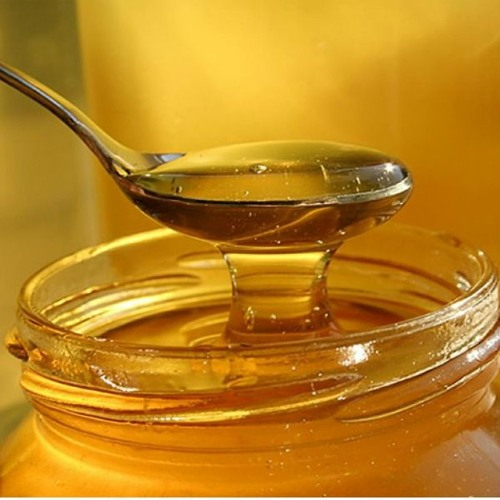 Consejos para consumir la mejor miel de abeja / Entrevista Radio Pudahuel