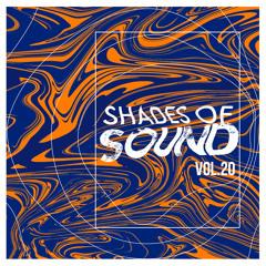 Joe Morris I Shades Of Sound Vol. 20