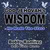 God Jehovah's Wisdom: He Made the Stars