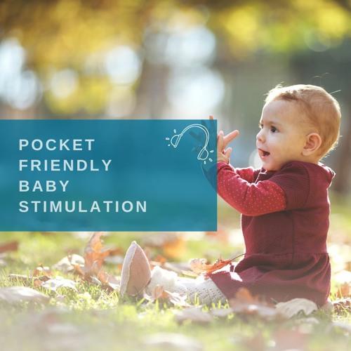 POCKET FRIENDLY BABY STIMULATION