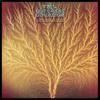 My Room (Waiting For Wonderland) (2005 Digital Remaster)