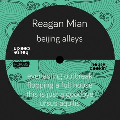 PREMIERE: Reagan Mian - This Is Just A Goodbye [House Cookin Records]