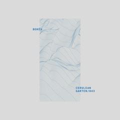 Premiere: Bokéh - Cerulean (James Dexter Remix) [Gartenhaus]