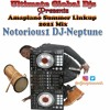 Download Amapiano Summer Linkup 2021 Mix..... Mp3