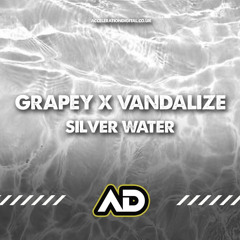 Grapey & Vandalize - Silver Water **Out on NOW Acceleration Digital  **
