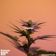 """FUTUREBEATS 004 """"4:20PM"""""""
