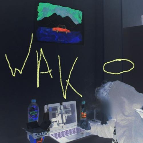 WAK - VICE