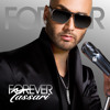 Forever Came Too Soon (Album Version)