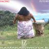 Ka Huila Wai Portada del disco