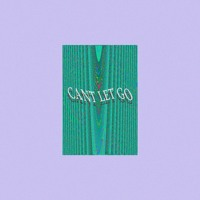 Indigo Waves - Can't Let Go