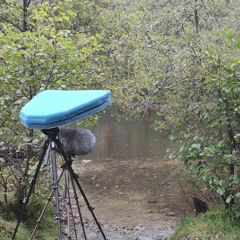 Loch Achilty Rain