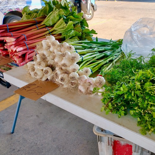 Hmong Farmers Find Their Midwest Footing