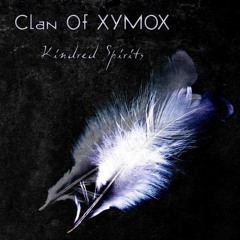 Clan Of XYMOX - A Forest (remake/cover)