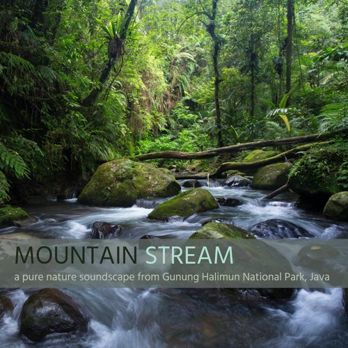 'Mountain Stream' - Album Sample - recorded in Gunung Halimun National Park, Java