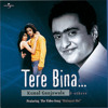 Tere Bina Jeena Nahin (Album Version)
