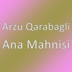 Ana Mahnisi