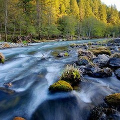 ROCKOLLECTIONS: NATIONAL RIVERS MONTH PT.3