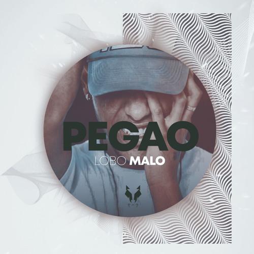 Pegao Song