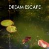 Mountain Creek Stream - Creek Sound and White Noise Sleep Music