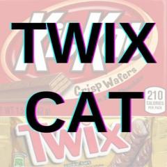 Twix Cat