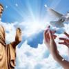 Người Phóng Sanh Như Thế Nào Mới Có Phước Đức - Và Đúng Với Ý Nghĩa Phóng Sanh