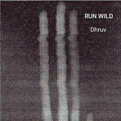 DANNY RUN WILD (Dhruv Remix)